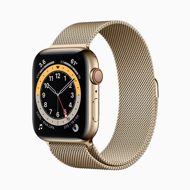 Gold Stainless Steel